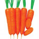 Ультра Плюс Морковь